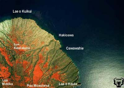 Aerial photo of Hakioawa Ili from 1993 NOAA survey. Photo courtesy of Dr. Steve Rohmann.