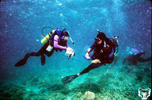 UH Diving Safety Officer (on right) checks CRAMP diving practices during survey off Molokai.