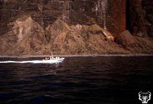 Commercial boat tour off Na Pali Coast. Photo by Paul Jokiel.