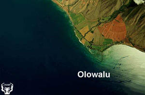 1993 NOAA aerial photo of the Olowalu area. Image provided by Steve Rohmann.