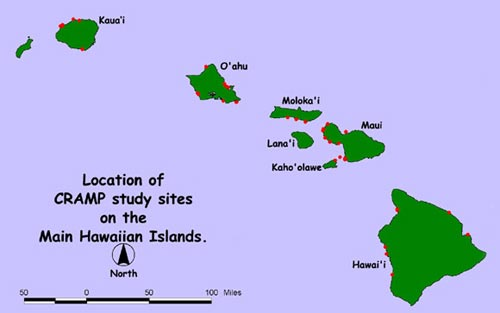 CRAMP Study Sites on the Main Hawaiian Islands