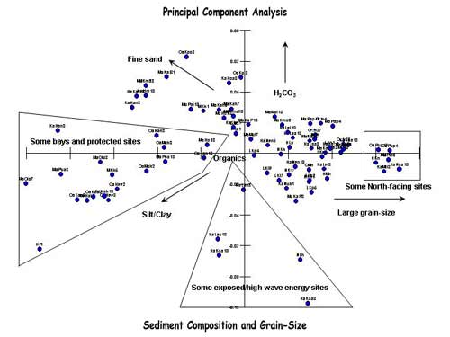 Figure 10: Multivariate analysis of sediment composition and grain-size