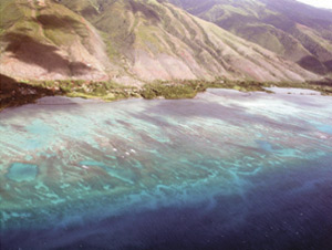 Figure 16.  South Moloka�i fishpond