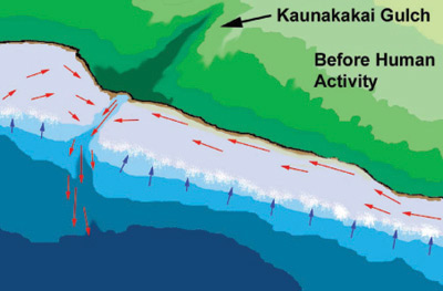 Figure 7. Wave action over the reef crest produces flow of clear oceanic water (blue arrows) onto the reef flat. The resulting current drives suspended sediment and bed-load of sand and mud along the shoreline (red arrows) and eventually into the Kaunakakai Gulch deep channel where it is transported into deeper water.